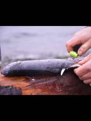 Morakniv fiksni ribiški nož, model: Fishing Comfort Fillet 90